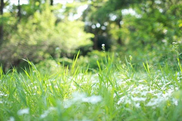 亀山市で土地活用や空き地・空き家の管理でお悩みの方は地元密着型のアップルクスまで